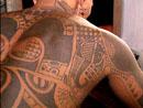 Polynesien tatouage dans le dos