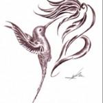 Tatouage dessin Gwada colibri