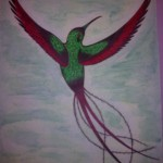 Tatouage dessin Gwada colibri couleur