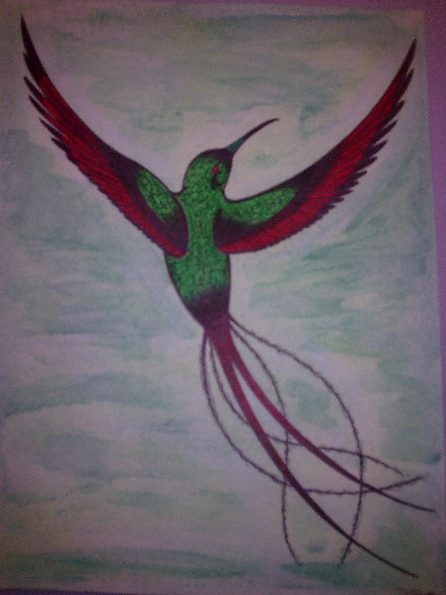 tatouage gwada le tatouage des iles tatouages de colibri et fleur d 39 hibiscus tattoo gwada. Black Bedroom Furniture Sets. Home Design Ideas