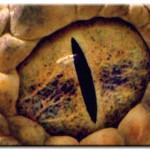 Modèle de tatouage d'oeil de serpent