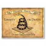Drapeau de Gadsden don't tread on me