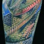 Modele de tatouage de serpent à sonnette réaliste - couleur