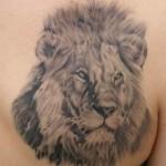 modèle de tatouage de lion réaliste