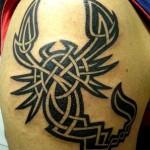 Modèle de tatouage de scorpion celtique