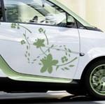 tatouage pour voiture : sticker fleurs
