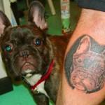 Tatouage raté portrait de chien
