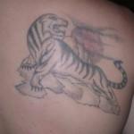 Tatouage raté de Tigre soleil couchant