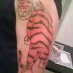 Tatouage raté de Tigre