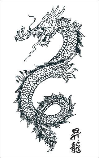 tatouage de dragon tattoo de dragon tribal symbolique du. Black Bedroom Furniture Sets. Home Design Ideas